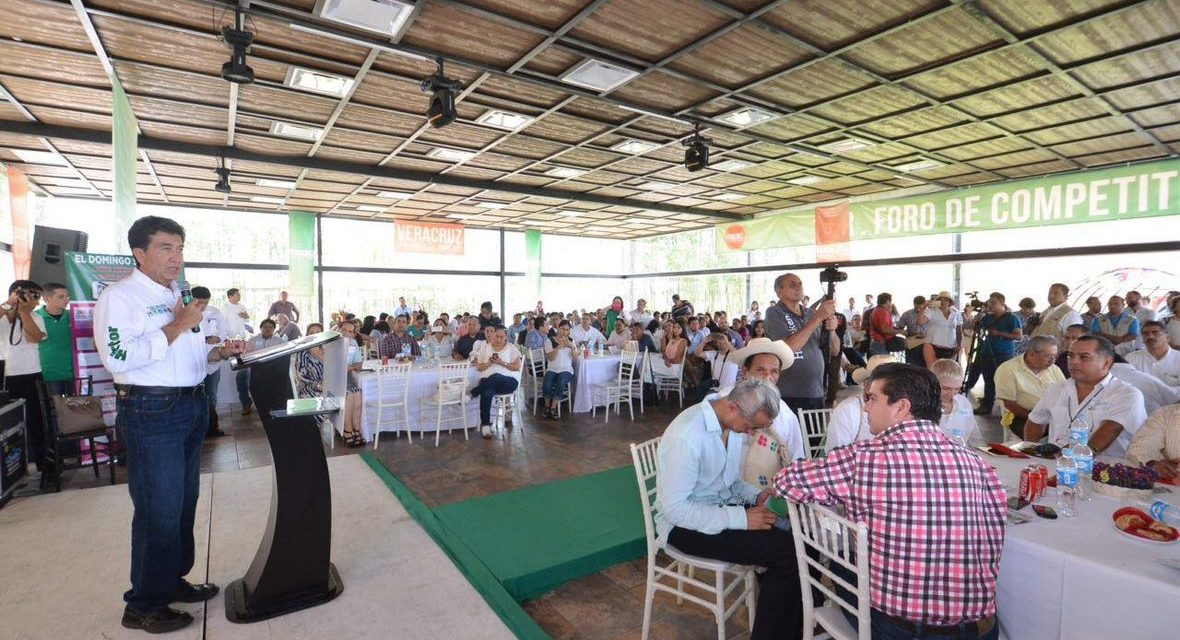 El turismo será el ancla del desarrollo de Veracruz: Héctor Yunes Landa