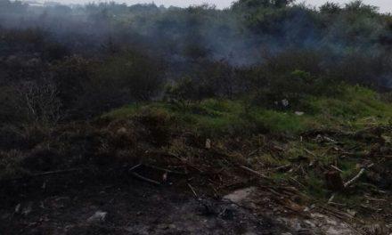 Incendio en Cobos moviliza a Bomberos.