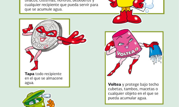 Intensifica SS medidas preventivas contra dengue, chikungunya y zika