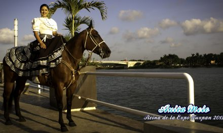 Ana Raquel Melo Juárez, Reina de la ExpoFeria Tuxpan 2013