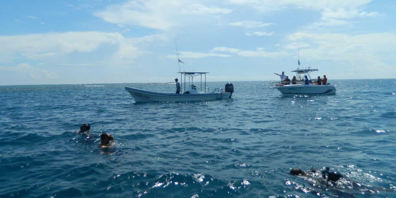 Limpian zonas arrecifales