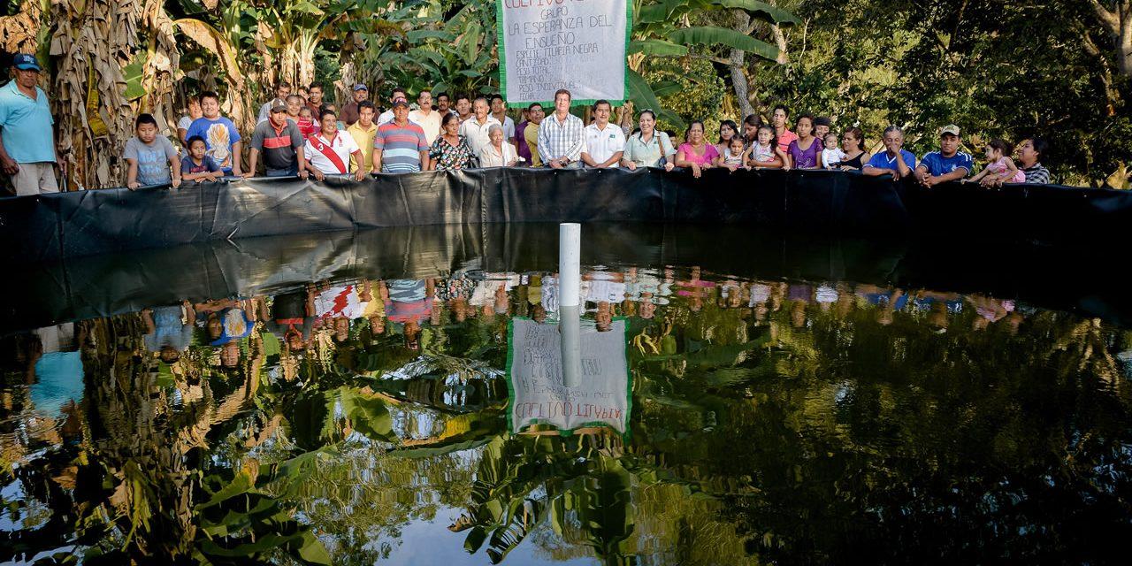 Ayuntamiento de Tuxpan Impulsa Proyecto Acuícola en Higueral