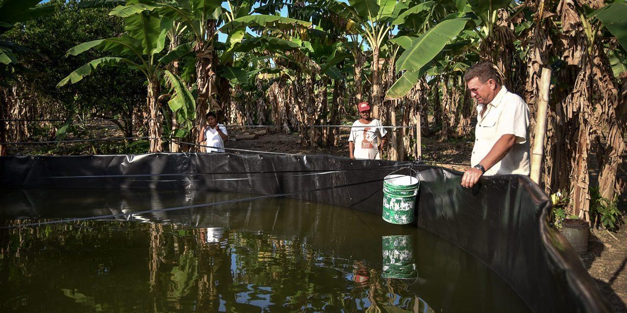 Autoridades Municipales, Supervisan Proyecto Acuícola en Higueral