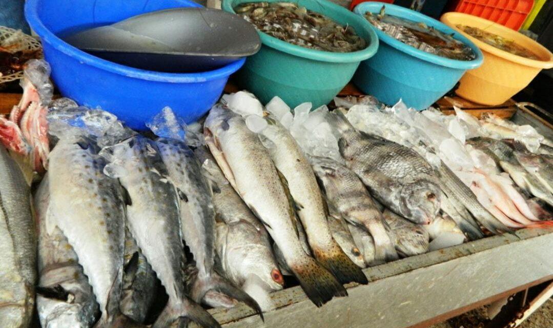 Escasean productos marinos