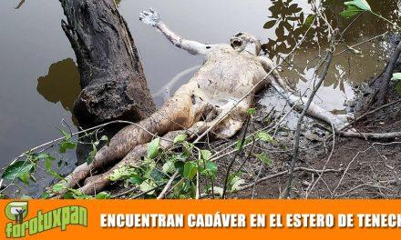 Aparece cadáver en el Estero de Tenechaco