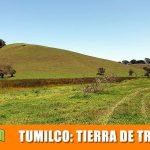 TUMILCO: Tierra de tradiciones