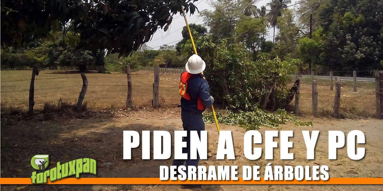 PIDEN A CFE Y A PC INICIEN DESRRAME DE ÁRBOLES