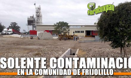 Insolente Contaminación en Frijolillo