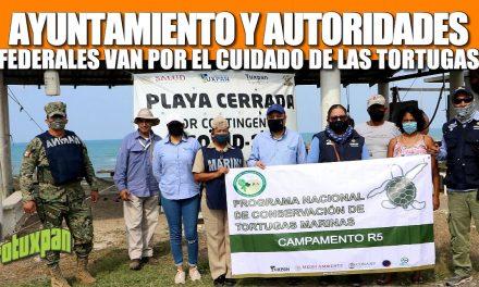 AYUNTAMIENTO Y AUTORIDADES FEDERALES VAN POR EL CUIDADO DE LAS TORTUGAS Y OTRAS ESPECIES