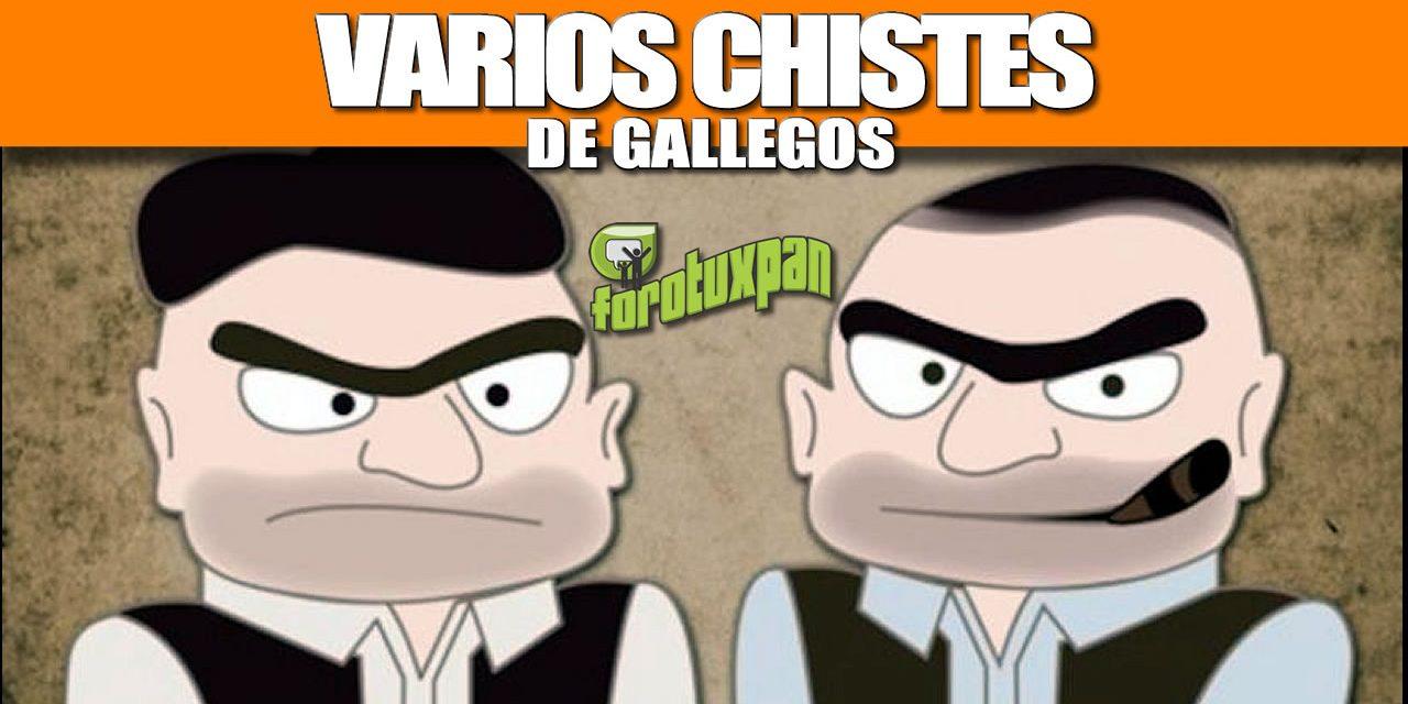VARIOS CHISTES DE GALLEGOS