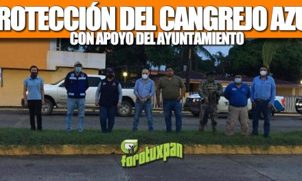 GOBIERNO DE TUXPAN MANTIENE PROTECCIÓN DEL CANGREJO AZUL, CON APOYO EN INSPECCIONES Y VIGILANCIA