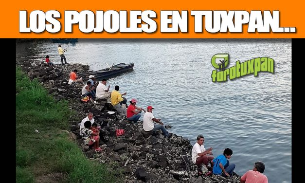 LOS POJOLES EN TUXPAN…