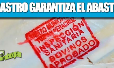 "Rastro Municipal garantiza abasto de carne por festividades de ""Todos Santos"""