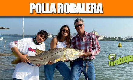 Polla Robalera