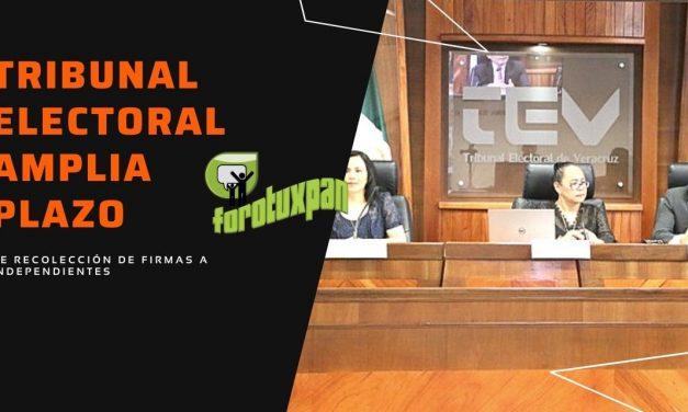 TEV AMPLIA PLAZO DE RECOLECCION DE FIRMAS A PRE CANDIDATOS INDEPENDIENTES
