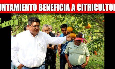 EL GOBIERNO DE TUXPAN BENEFICIA A CITRICULTORES GESTIONANDO MEJORES PRECIOS