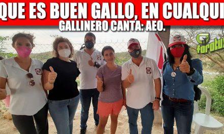 EL QUE ES BUEN GALLO, EN CUALQUIER GALLINERO CANTA: AEO