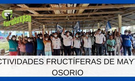ACTIVIDADES FRUCTÍFERAS DE MAYTE OSORIO