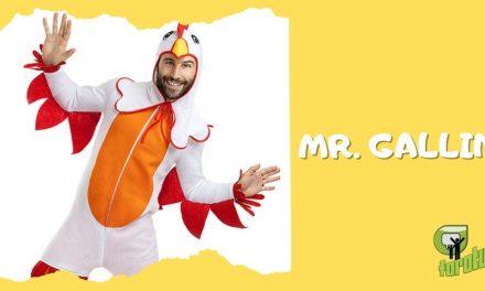 MR. GALLINA