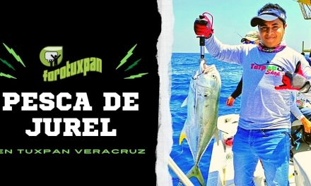 Pesca de JUREL en Tuxpan, Veracruz