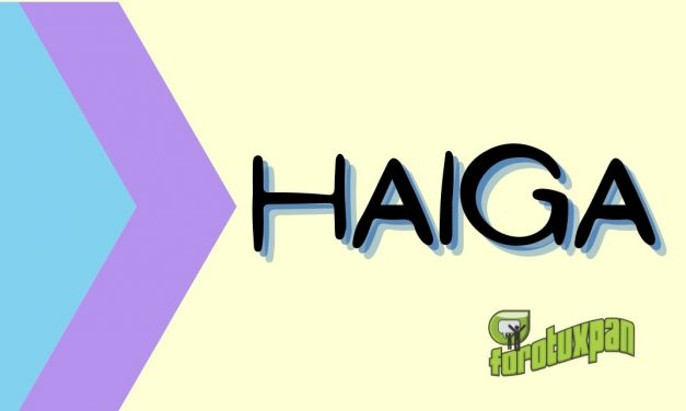 HAIGA